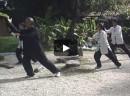 Chi Kung de Taichi – Pachi Taichi Chuan